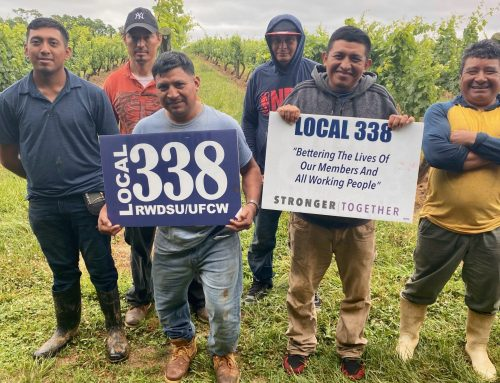 Unionizing farmworkers highlights evolving agriculture landscape